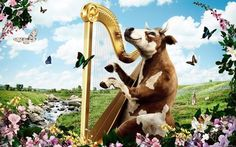 Cow playing the harp wallpaper #653