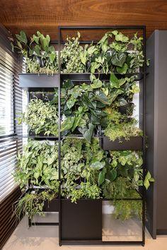 Green Design, Plant Decor Indoor, Garden Shower, Easy Herbs To Grow, Hanging Garden, Plant Decor, Plant Shelves, Plant Wall, Indoor Plants