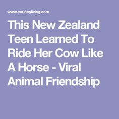 This New Zealand Teen Learned To Ride Her Cow Like A Horse - Viral Animal Friendship