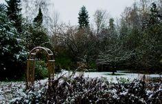 Superb Der erste Schnee ist heute da selbst in meinem Garten gar