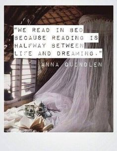 A lovely book quote about the joys of reading.