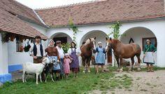 Jáňův dvůr (Jižní Morava) Farmy, Wine Cellars, Goats, Horses, Animals, Vacation, Animales, Animaux, Wine Fridge