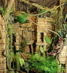 Jungle Ruins Vivarium Theme COMPLETE!