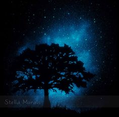 FIELD of DREAMS  Glow in the Dark Star Poster  by StellaMurals