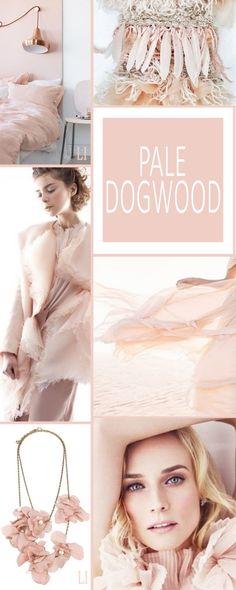 Color Of The Month: May 2017 Pantone Pale Dogwood Pink Beige, Blush Pink, Color Trends, Color Combinations, Pantone 2017 Colour, Paint Color Schemes, Color Collage, Mood Colors, Jolie Photo
