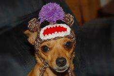I need a sock monkey hat for my puppy!