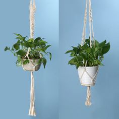 pot plant hangers on sale at reasonable prices, buy Vintage Geknoopt Plant Hanger Mand Groen Bloempot Macrame Lifting Touw Plant Hanger Pannenlap Tuin Opknoping Bloem Display from mobile site on Aliexpress Now! Rope Plant Hanger, Pot Hanger, Macrame Plant Holder, Plant Hangers, Decoration Design, Deco Design, Hanging Baskets, Hanging Plants, Potted Plants