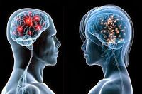 Have you ever attempted to know how hard your brain works? If no, here are some really interesting human brain facts that induce your thirst on brain. Tumor Cerebral, Intelligence Is Sexy, Collective Intelligence, Brain Facts, Men Vs Women, Mind Blowing Facts, Mind Tricks, Wtf Fun Facts, Psychology Today