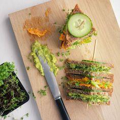 Avocado-Frischkäse-Sandwich