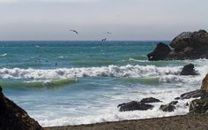 Google+ Art Paintings, California, Future, Water, Google, Outdoor, Gripe Water, Outdoors, Future Tense
