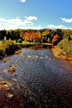 Truro, Nova Scotia - The Weather Network Alaska, O Canada, Canada Travel, Truro Nova Scotia, Places To Travel, Places To See, Acadie, Atlantic Canada, Weather Network