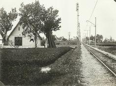 Linea FEVE Pont de Fusta-Grao. 1936. Actual avenida de los Naranjos. Colección: Manolo Lozano.