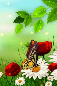 ca bouge - Page 15 Butterfly Gif, Butterfly Pictures, Butterfly Wallpaper, Beautiful Gif, Beautiful Roses, Beautiful Pictures, Illustration Mignonne, Illustration Noel, Gif Bonito