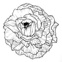 Seek the simplicity How To Draw Hands, Illustration, Instagram Posts, Design, Illustrations, Design Comics