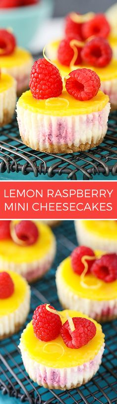 Lemon Raspberry Mini Cheesecakes - Easy to make and a delicious dessert recipe!: