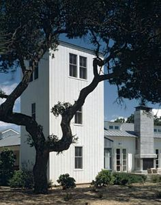 Walker-Warner Architects - SONOMA RANCH and love the dg around the oak trees which is a must for our back yard