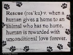Pet Rescue Acrylic on Canvas by TheRescueMama on Etsy, $21.99