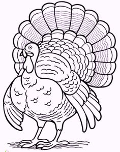 130 printables for thanksgiving this turkey coloring page is perfect for getting in the thanksgiving mood color this turkey coloring page with the little
