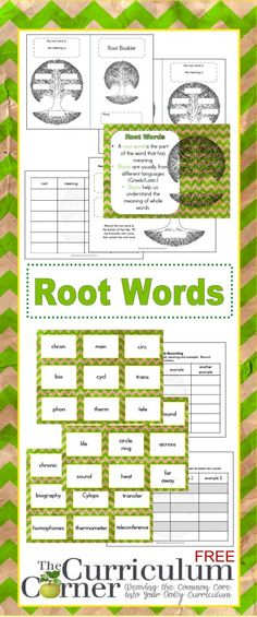 Root Words FREE from The Curriculum Corner | Graphic Organizers, Card Sort, Recording Pages & MORE