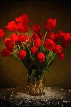 With Tenor, maker of GIF Keyboard, add popular Red Roses animated GIFs to your conversations. Share the best GIFs now >>> Roses Gif, Flowers Gif, Red Flowers, Pretty Flowers, Beautiful Red Roses, Beautiful Gif, Welcome Flowers, Coffee Flower, Yellow Plants