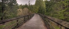 The Galloping Goose trail is is 55 km in length, connecting Sidney to downtown Victoria and then going all the way to Sooke. South Island, Vancouver Island, Railroad Tracks, Trail, Hiking, Anniversary, Places, Walks, Trekking