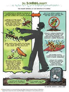Do Zombies Exist? - Scientific American