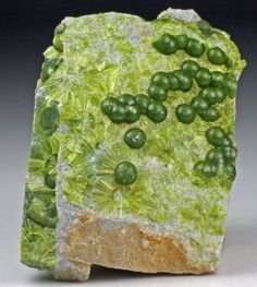 Aesthetic specimen of green Wavellite forming balls on matrix. Great colour and nice form! From Avant mine, Garland Co. Cool Rocks, Beautiful Rocks, Minerals And Gemstones, Rocks And Minerals, Rock Collection, Mineral Stone, No Photoshop, Rocks And Gems, Stones And Crystals