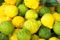 Les vertus et utilisation de l'huile essentielle de bergamote