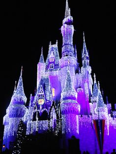 Disney World at Christmas! MUST GO! This is gorgeous.