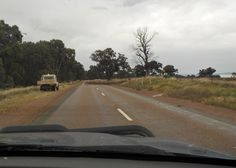 Sheep droving along the road, Melrose, South Australia South Australia, Personal Photo, Sheep, Country Roads, Animation, Film, Movie, Movies, Film Stock