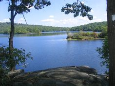 Ramapo Lake in Ramapo State Forest Park, NJ @Sadaf Mahmood @Aroob Basit We should go hiking here one day! Its right by my house