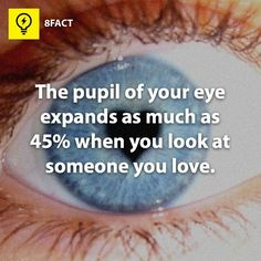 The pupil of your eye expands as much as 45% when you look at someone you love