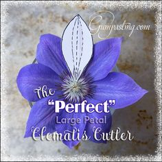 """{The """"Perfect"""" Large Petal Clematis Cutter}"""