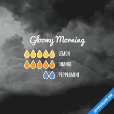 Gloomy Morning - Essential Oil Diffuser Blend
