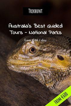 Trekhunt: Hiking, Biking, Climbing And More Anywhere In The World Adventure Activities, Adventure Tours, Kayak Camping, Paragliding, Rock Climbing, Tour Guide, Rafting, Biking, Kayaking