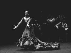"""Antonio Gades   """"El flamenco debe hacer sentir, no sólo asombrar""""   En la foto: Sara de Luis"""
