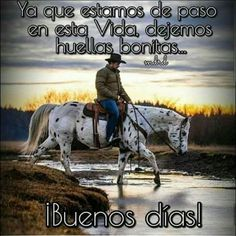 Cowboy Quotes, Morning Greeting, Quotes About God, Cowboys, Good Morning, Horses, Memes, Animals, Life