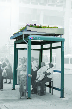 Brilliant idea! Green roof for bus shelters - bringing some greening into the cities.