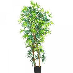 5′ Fancy Style Bamboo Silk Tree