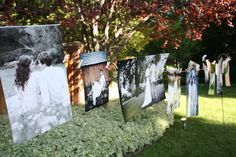 engagement pics on a clothesline