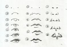 Eyes, lips, nose drawing steps