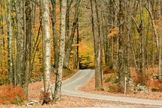 The 7 Best Places to See Fall Leaves in New England  - TownandCountrymag.com