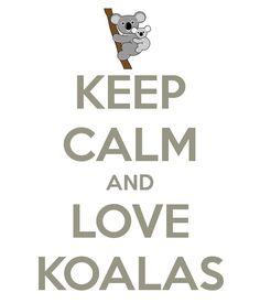 Love koala