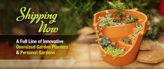 Eco Personal Garden   Miniature Garden Planters
