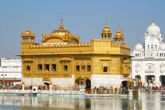 Golden Temple or The Harmandir Sahib, Punjab, India.- It is made of real gold,marble and precious stone. Here Buda used to meditate Harmandir Sahib, Golden Temple Amritsar, Yoyogi Park, Temple India, One Day Tour, North India, H & M Home, India Tour, World Religions