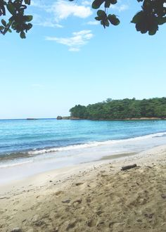 winnifred beach | ja