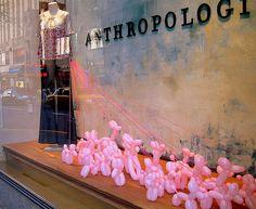Pink balloon doggies in Anthropology windows
