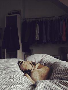 Sleeppppyyy