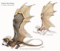 Emperor Ray Dragon by *beastofoblivion on deviantART || CHARACTER DESIGN REFERENCES | Find more at https://www.facebook.com/CharacterDesignReferences if you're looking for: #art #character #design #model #sheet #illustration #best #concept #animation #drawing #archive #library #reference #anatomy #traditional #draw #development #artist #how #to #tutorial #conceptart #modelsheet #dragon #dragons
