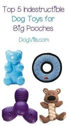 Looking for indestructible dog toys? These 5 dog accessories make great Christmas gifts for your pooch!
